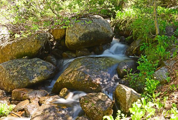 Hoffer Lakes 1/2-Mile Trail, 6-24-15
