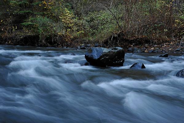 South Fork WW-River Trail (Fall, Again), 10-21-15